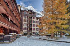 Appartement à Chamonix-Mont-Blanc - Windlip: Residence Jonquille