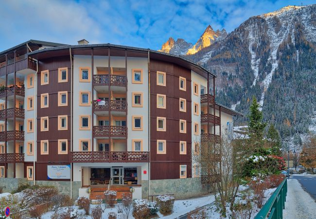 Exterior and views from Chamonix sud
