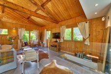 Modern alpine living room